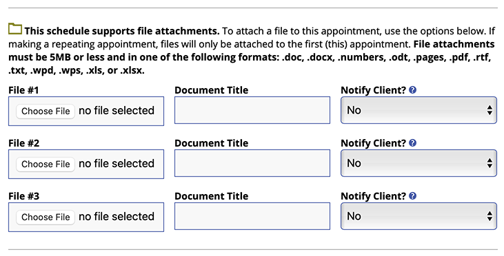 Attach a File on Appointment Form