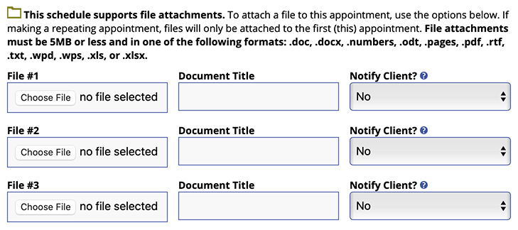 File Attachment Options on the Appointment Form